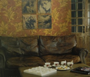 格莱美,壁纸,萨琳娜