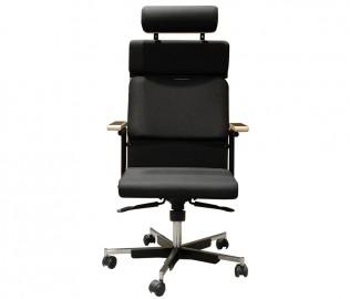 猫王,椅子,丰托思