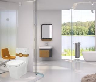 金牌卫浴,坐便器,马桶