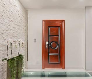王力,防盗门,入户门