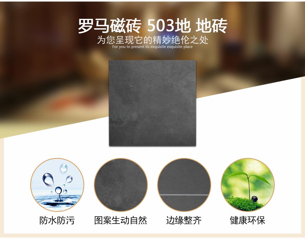 罗马磁砖 503地型号环保瓷质地砖 厨房卫生间地砖/主砖/大砖 工艺