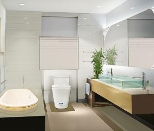 美标卫浴,座便器,马桶