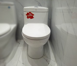 金牌卫浴,座便器,马桶