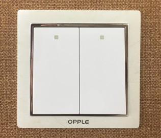 欧普照明,双开开关,开关面板