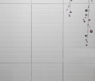 墙砖,釉面砖,瓷片
