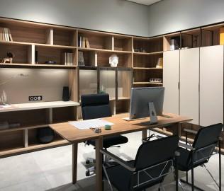 猫王,书柜,书房家具