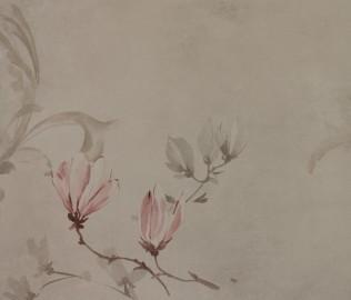 伯鲁伊特,墙纸,壁纸