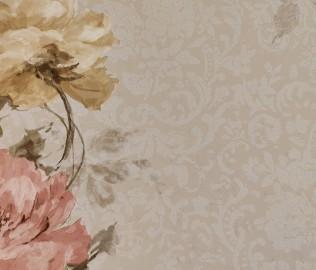 伯鲁伊特,壁纸,纯纸墙纸
