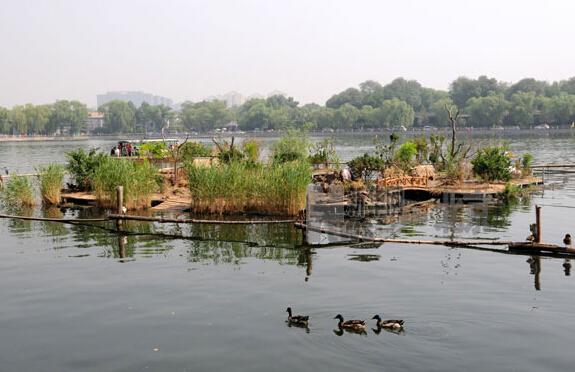 北京9级大风 什刹海野鸭岛被吹跑1公里
