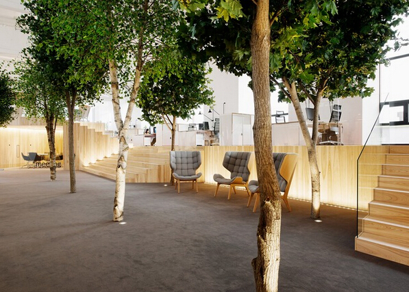 阳光明媚的森林式办公室设计_蓝景商城